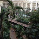 ภาพถ่ายของ Gaylord Opryland Resort & Convention Center