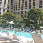 Pool at the Bellagio!  Spend some relaxing time here!