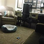 Candlewood Suites Greenville Foto
