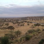 Tarangire Safari Lodge의 사진