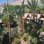 Bilde fra The Orchid Hotel and Resort Eilat
