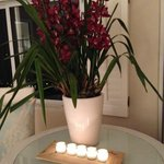 Magnificent orchids in every room