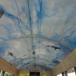Ceiling of open air car