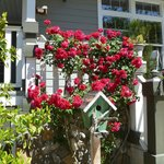 Flowers on wraparound porch