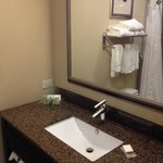 Bild från Holiday Inn Hotel & Suites Lake Charles W-Sulphur