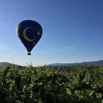 wine country balloons - view from patio