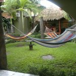 Foto de Hostel Backpackers La Fortuna