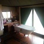 Foto di White Elephant Safari Lodge