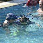 Try SCUBA in the pool
