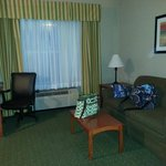 Φωτογραφία: Holiday Inn Express Orlando Airport