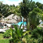 Photo of Oasis Tulum