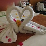 Swan Towels from the Maid