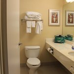 Fairfield Inn Warren Niles Foto