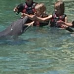 Petting a dolphin. They won't let parents close enough to take a decent photo and charge a huge