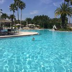 Foto de Saddlebrook Resort Tampa