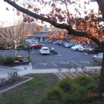 Foto de BEST WESTERN Tall Trees Canberra