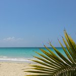 Φωτογραφία: SuperClubs Rooms on the Beach Negril