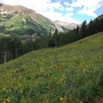 Foto di Grand Lodge Crested Butte