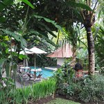 Foto de Matahari Cottage Bed and Breakfast