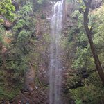 Wailua River tour and falls