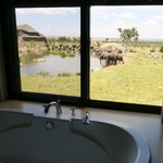 Four Seasons Safari Lodge, Serengeti照片
