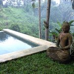Photo of Zenubud