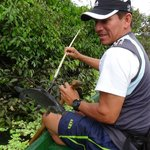 Amazonia Expeditions' Tahuayo Lodge resmi