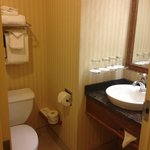 Φωτογραφία: BEST WESTERN PLUS City Centre/Centre-Ville