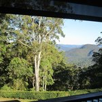 Foto de Mapleton Falls Accommodation