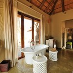 Bilde fra Madikwe Hills Private Game Lodge