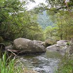 Foto di Mossman Gorge Bed and Breakfast