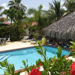 The pool at Harbour Club surrounded by tropical flowers and coconut palms