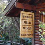 Photo of Under Milkwood