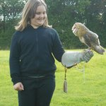 Barn Owl - my daughters favourite