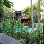 Foto de Hibiscus Gardens Spa Resort