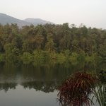 View of the Periyar River