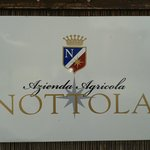 Photo of Villa Nottola