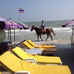 Foto van City Beach Resort