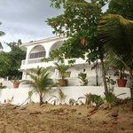 Foto de Coconut Palms Inn