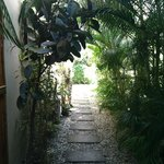 beautiful walkways with great plants