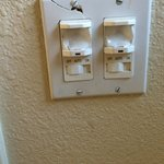 bathroom light/fan switches