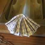 seashell dishrag on the kitchen sink