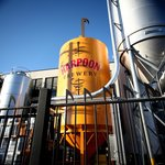 Welcome to Harpoon Brewery!