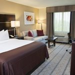 Holiday Inn Charlotte Airport Hotel Foto