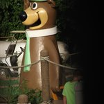 Yogi Bear's Jellystone Park Camp-Resort의 사진