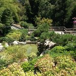More of the Japanese Garden at The Huntington