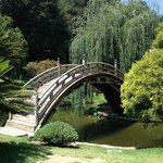 Bridge over troubled waters?  The Japanese garden at The Huntington