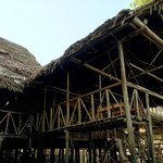 Amazonia Expeditions' Tahuayo Lodge의 사진