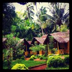 Foto de Savithri Inn Bamboo Cottages and Resort