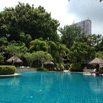 Rasa Wing Pool - peace and tranquility